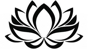 ejemplos plantillas