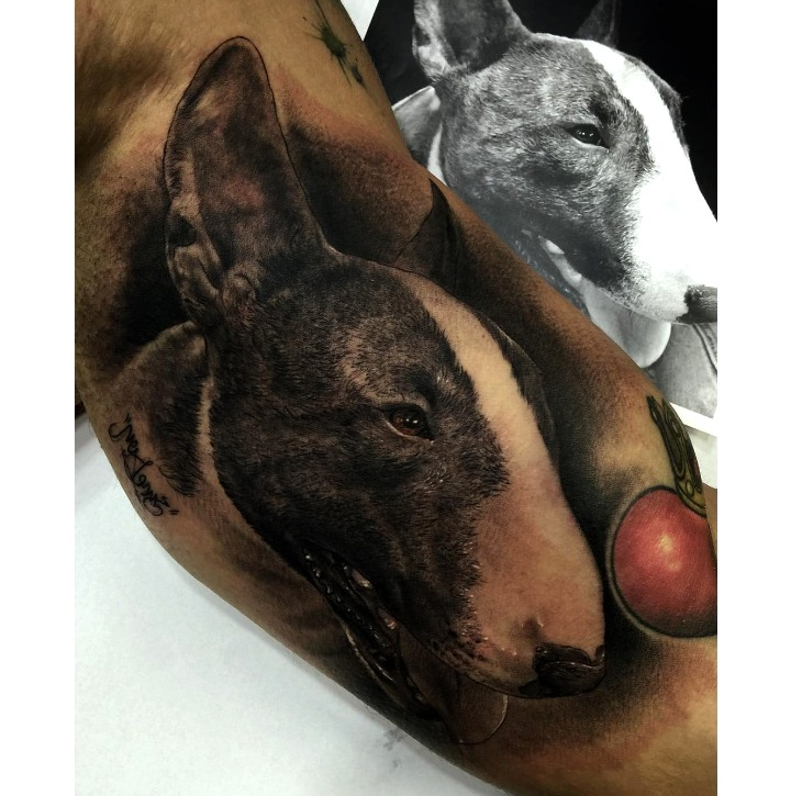Tattoos de bull terrier