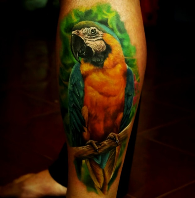 Tattoos de loro, guacamaya o cacatúa